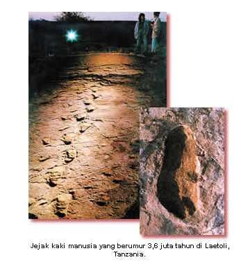 harun-yahya-e28093-menyanggah-darwinisme-e28093-asal-usul-manusia_1233586755904