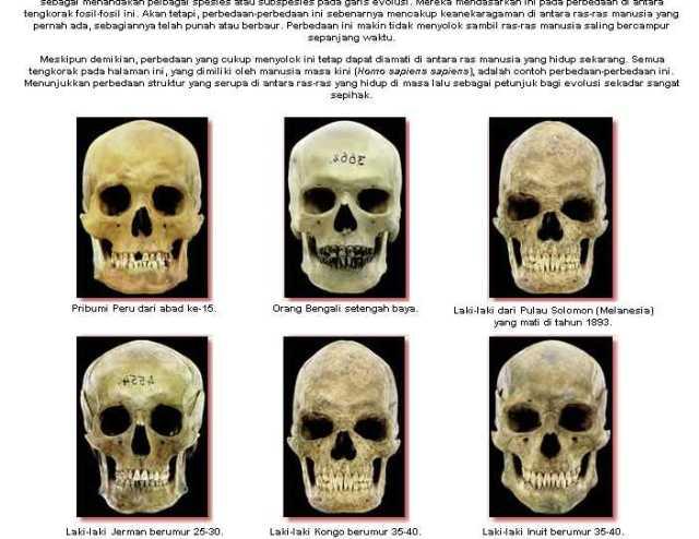 harun-yahya-e28093-menyanggah-darwinisme-e28093-asal-usul-manusia_1233586937405