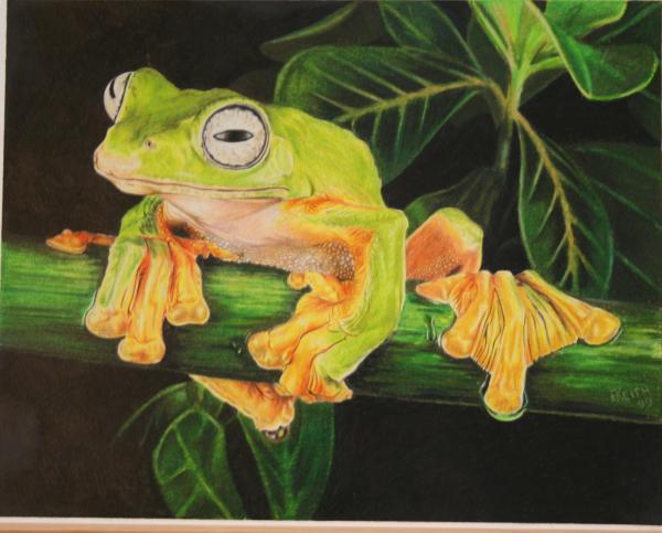 musky-flying-frog-barbara-keith